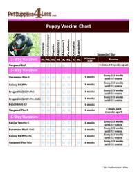 Dog Vaccination Schedule Chart Philippines Dog