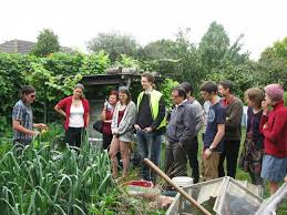 community gardening. Learning About Container Gardening At Oakeover Community Gardens