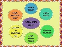 Chart On Flow Chart On Fundamental Rights Of Indians Brainly In