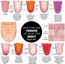 Tongue Analysis Chart Traditional Chinese Medicine What Does You Tongue Say About