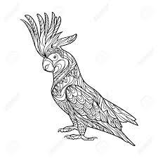 オウムはオウム鳥大人ベクトル イラストの塗り絵です