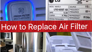 Fridge Filters How To Change Air Filter Lg Refrigerator Fridge Youtube