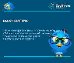 editing essays simple writing tips edubirdie com how to edit your essay