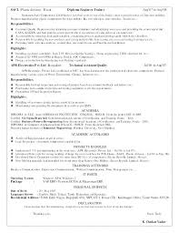 Computer Resume Skills Magnificent Resume Examples For Computer Skills Hadenough