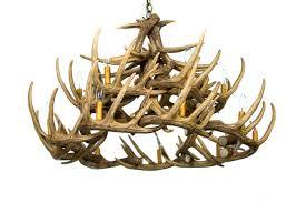 whitetail deer 24 antler chandelier