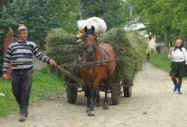 Image result for romanian peasants