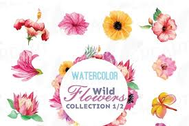 The best selection of royalty free flower vector art, graphics and stock illustrations. Watercolor Wild Flowers Clip Art Pack Exotic Watercolor Flowers Valentine Clip Art Eps Png Jpg Svg Vector Files Included Part 1 2 64753 Illustrations Design Bundles