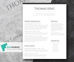Another Word For Cleaner On Resume Professional Clean A Basic But Stylish Resume Layout Freesumes