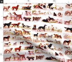 Irish Setter Width Chart Colorful Fabrics Digitally Printed By Spoonflower Dogs Puppy Puppies Identification Charts Gordon Setter Irish Setter English Setter Yorkshire
