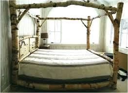Child Canopy Beds Interior Canopy Bed Amazing Fabulous Designs For ...