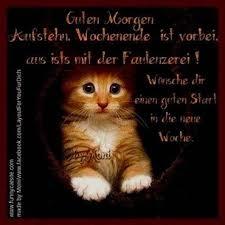 Guten Morgen Sprüche Montag 2jpg Gb Pics Gästebuchbilder