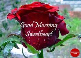 Good Morning My Love Quotes Extraordinary Good Morning Quotes For Her Sweetheart Good Morning My Love