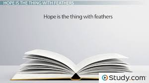emily dickinson s hope is the thing feathers summary  emily dickinson s hope is the thing feathers summary analysis theme video lesson transcript study com