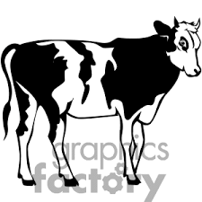 beef clipart black and white. Exellent And Cattle20Clip20Art Inside Beef Clipart Black And White