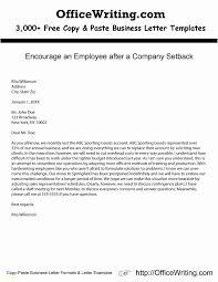 Resume Writing Programs Professional Resume Templates