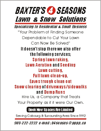 lawncare ad lawn care business flyer