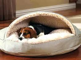 Dog Bed Patterns Amazing Homemade Dog Bed Patterns Trundle Dog Beds Impressive Dog Bed
