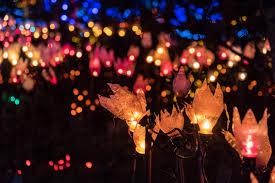 The Lights Fest San Francisco Vandusen Festival Of Lights 2019 In Vancouver Dates Map