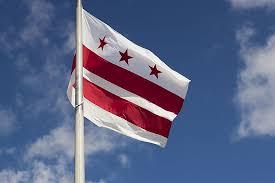 Image result for washington state flag