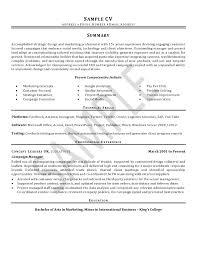Cv Sample Professional Cv Writing Service