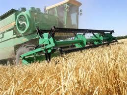 Дипломы курсовые и рефераты по сельскому хозяйству на заказ Дипломы курсовые и рефераты по сельскому хозяйству на заказ в Днепропетровске