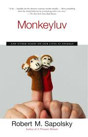 monkeyluv and other essays on our lives as animals robert m  monkeyluv and other essays on our lives as animals robert m sapolsky 9780743260169 com books