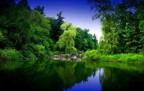 Zen garden, Hd nature wallpapers ...