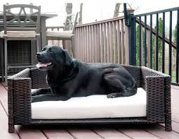 archie oscar cristobal rattan rectangular dog sofa