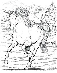 horse coloring pages pretty inspiration horse coloring book pages horse print out
