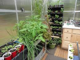 Hydroponics Herb Garden Kitchen Kitchen Amazing Modern White Vertical Pod Like Hydroponic Kitchen