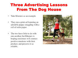 dog walking advertising three advertising lessons from the dog house