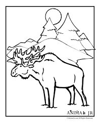 Small Picture Moose Coloring Page Woo Jr Kids Activities