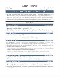 It Resumemary Examples For Customer Service Executive Resume Summary