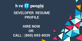Developer Resume Profile Hire It People We Get It Done