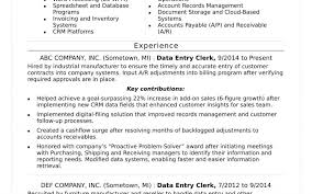 Data Processor Resume Magnificent Resume Summary Examples Data Entry At Resume Sample Ideas