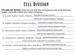 Venn Diagram Meiosis And Mitosis Meiosis Mitosis Venn Diagram