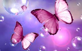 Free download Beautiful Pink Butterfly ...