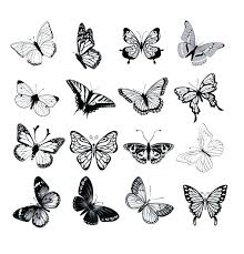 Printable Butterfly Outline Outline Of A Butterfly Printable Dark Butterfly Template