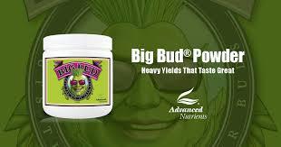 Big Bud Powder Bloom Booster Advanced Nutrients