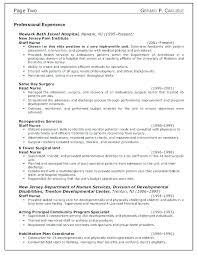10 Career Summary Examples Lycee St Louis
