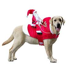Idepet Funny Pet Dog Cat Christmas Costume Santa ... - Amazon.com