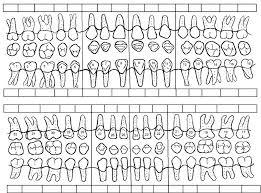 Tooth Charting Template Patient Dental Chart Sample Www Bedowntowndaytona Com
