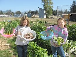 garden grants. Exellent Grants Garden Grant Application With Grants