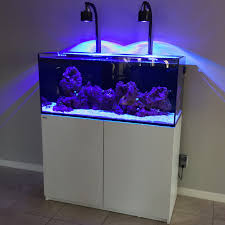 Led Lights For Red Sea Max 250 Redsea Aquariums Reef Central Online Community