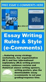 writing style pennington publishing blog e comments for essay writing rules and style