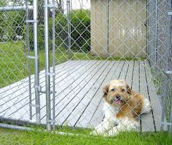 dog kennel flooring e outdoor and platforms options