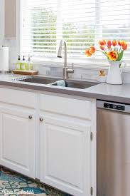 simple and functional ideas for organizing under the kitchen sink and other kitchen cleaning supplies