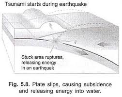 essay on tsunami top essays natural disasters geography plate slips causing subsidence and releasing energy into water the energy released produces tsunami waves