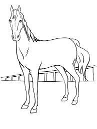 Immagini Dei Cavalli Da Colorare Fredrotgans