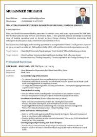 Us Resume Format Fascinating Resumes For Bank Jobs Resume Format Job Samples Shalomhouse Us